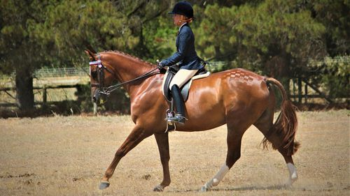 In May 2019, Mrs Doolan competed in the Yass Show, winning the Champion District Rider and the Charles Sainsbury Perpetual Trophy.