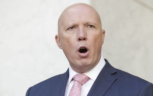 Deputy Premier hits back at Peter Dutton for personally bringing COVID-19 into Queensland