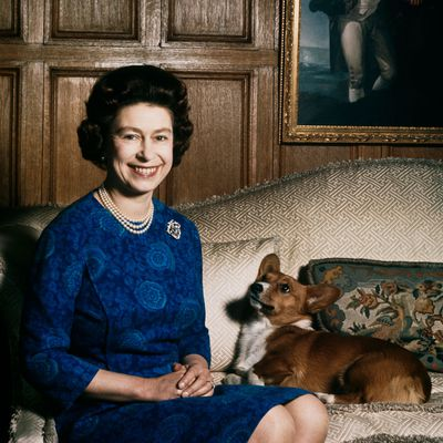 Queen Elizabeth's corgis have a secret duty