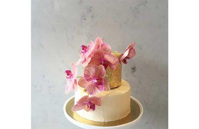 2. Orchids