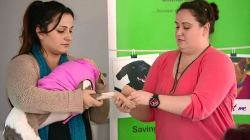 Melbourne animal rescue clinic teaches first aid for pets