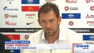 Popovic sacked by Turkish club: reports