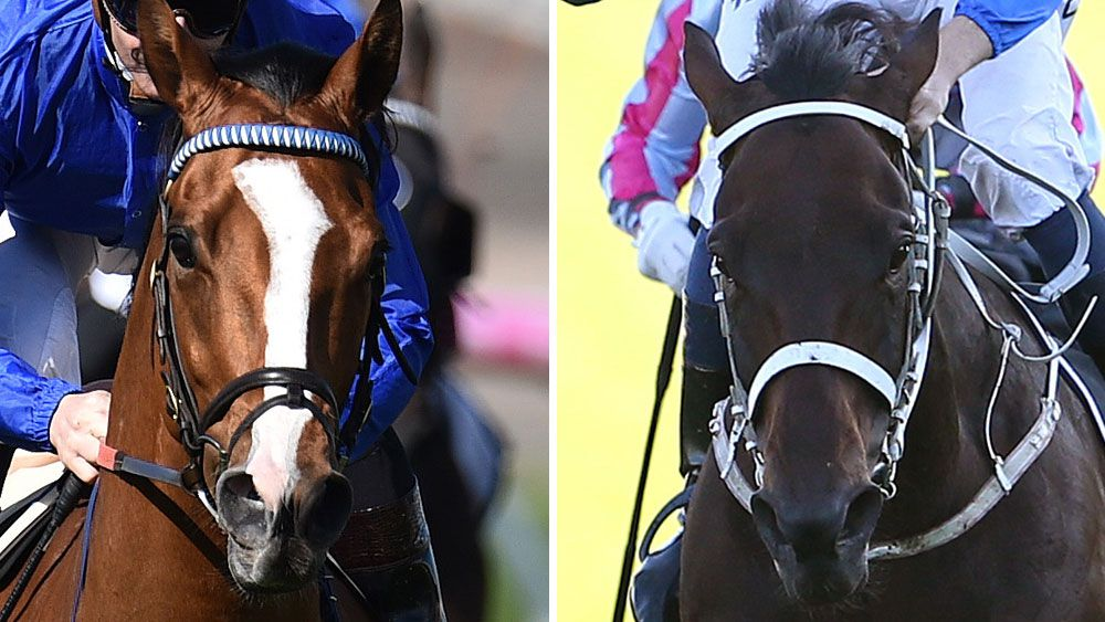 Hartnell and Winx will meet in the Cox Plate. (AAP)