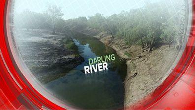 Darling River national crisis