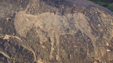 Mysterious rock carvings found in world's largest asteroid crater
