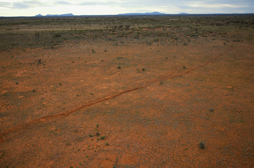 A 20 km-long surface rupture also formed in the Petermann Ranges.