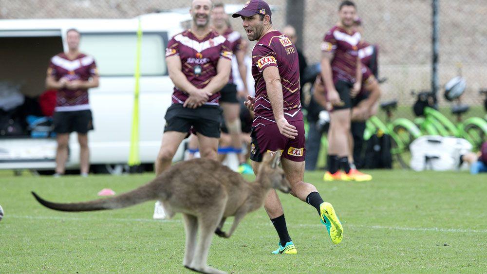 Cameron Smith runs away from a kangaroo during Queensland training. (AAP)