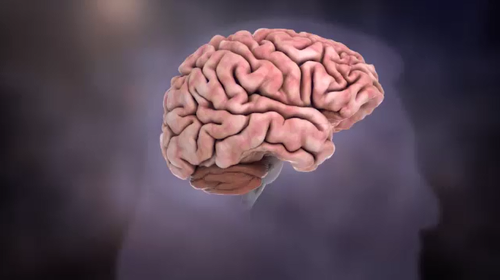 Several biopharmaceutical companies are trialling anti-Tau therapies to combat Alzheimer's.