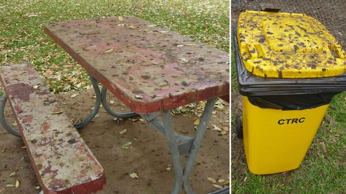 Local parks have been covered in flying fox faeces.  (Supplied)