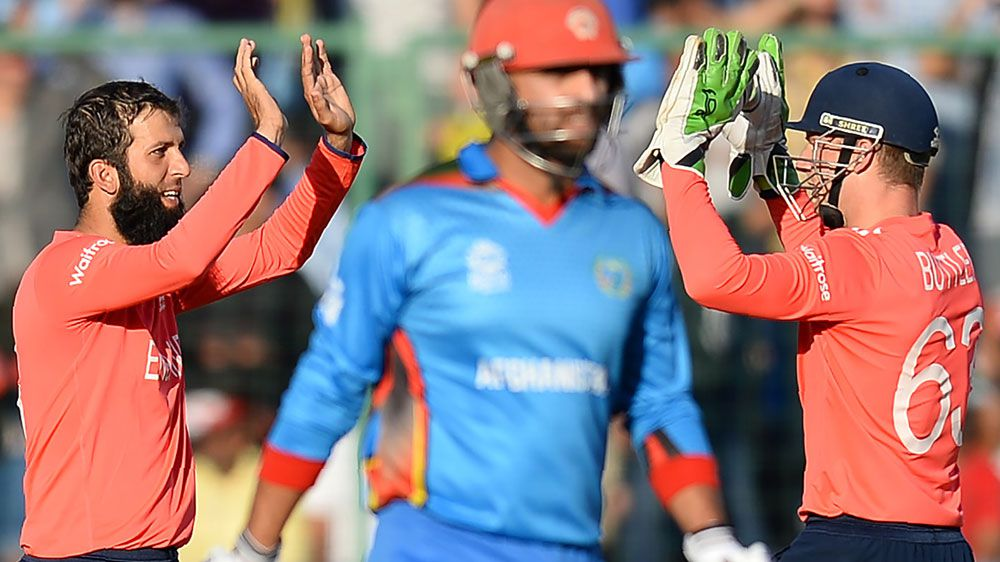 Cricket: Ali the star as England survive Afghan scare